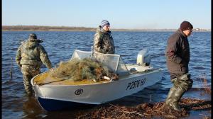 Управление водными биоресурсами и рыбоохрана