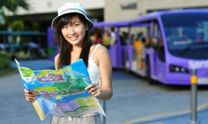 Организация туристской деятельности (с изучением китайского языка)