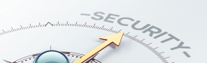 Безопасность информационных технологий в правоохранительной сфере