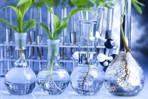 Общая и прикладная биотехнология