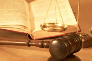 Государственно-правовая специализация