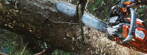 Технология лесозаготовительных и деревоперерабатывающих производств