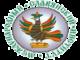 Логотип ВВФ МСИ