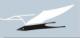 Логотип СНИ
